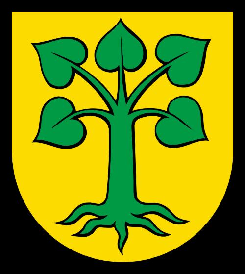 Alarmanlagen Beinwil Freiamt