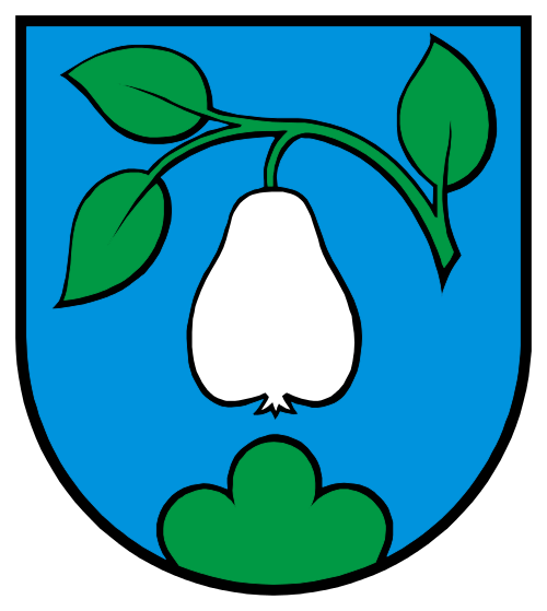 Alarmanlagen Birrwil