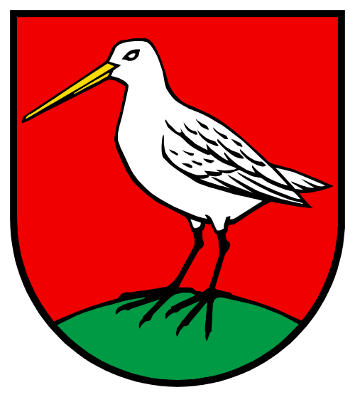 Alarmanlagen Boniswil