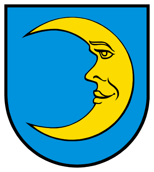 Alarmanlagen Boswil