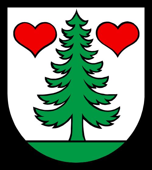 Alarmanlagen Gontenschwil