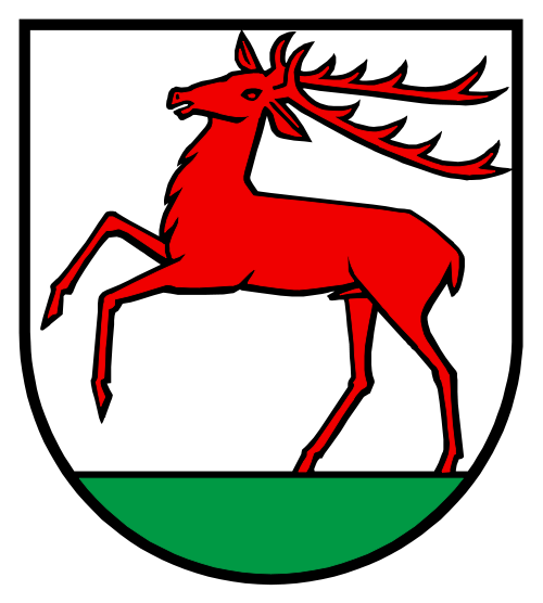 Videoüberwachung Hirschthal
