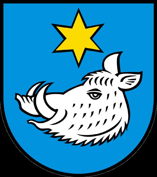 Alarmanlagen Safenwil
