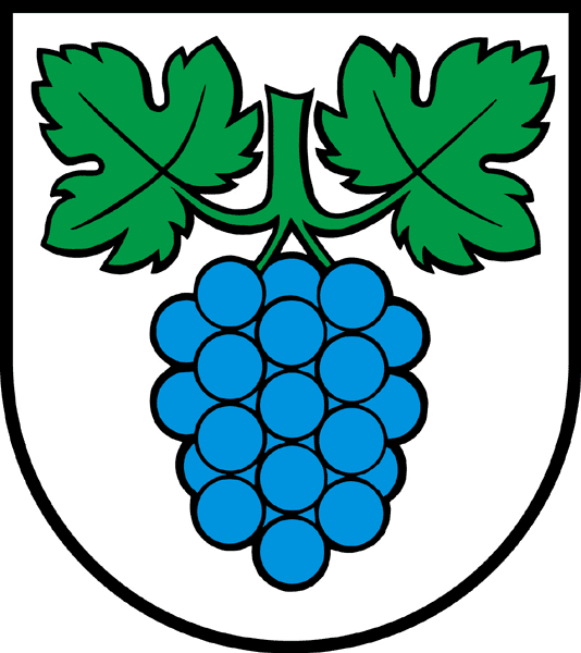 Alarmanlagen Thalheim