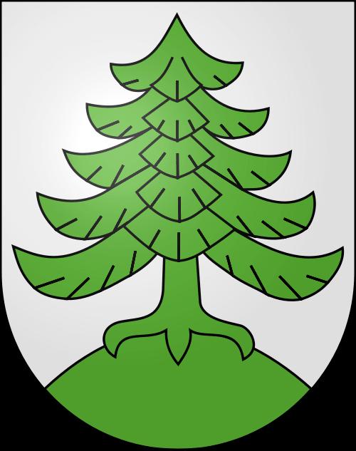 Alarmanlagen Busswil bei Melchnau