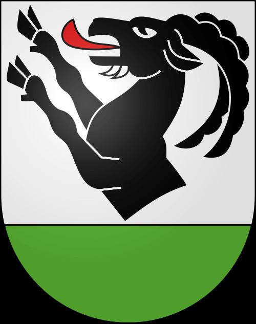 Alarmanlagen Niederried bei Interlaken