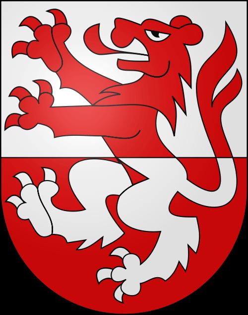 Umzug Rüderswil