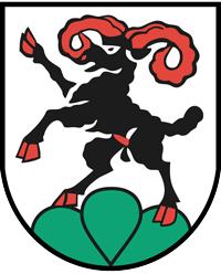 Alarmanlagen Roggenburg