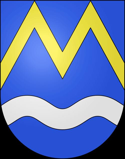 Umzug Maggia
