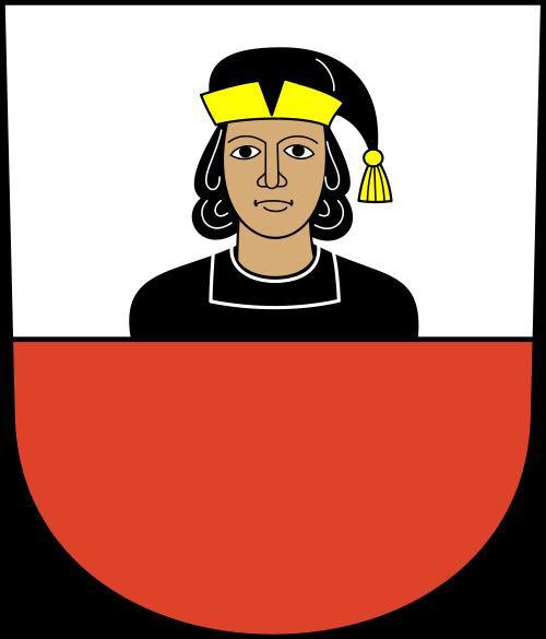 Umzug Niederhasli
