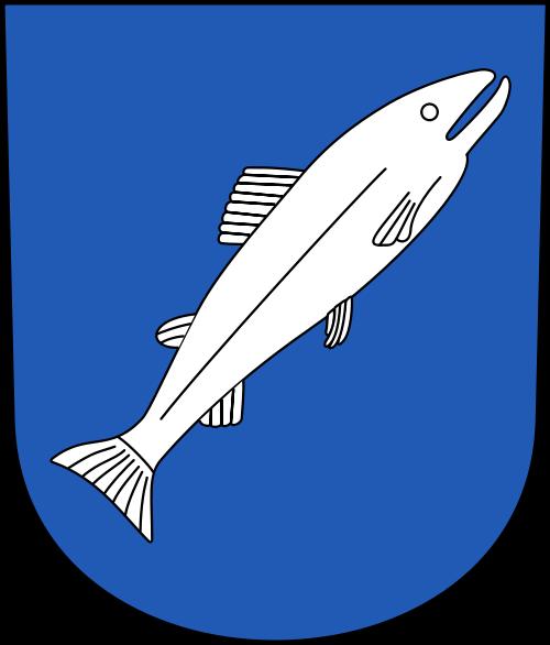 Videoüberwachung Rheinau