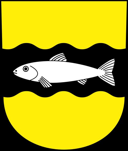 Videoüberwachung Schwerzenbach